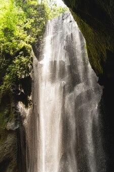 Natura meravigliosa. bella immagine della natura pacifica che ispira i turisti, piante verdi che crescono sulle rocce