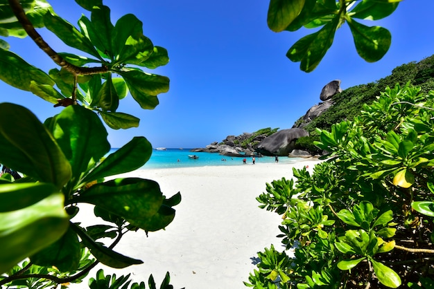 La bellissima natura vista sul mare di sky blue sea rock a similan island no.8, similan national park, phang nga, thailandia