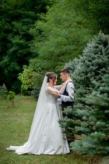 Belle coppie degli sposi che camminano nel bosco. luna di miele. mano della tenuta dello sposo e della sposa in abetaia.