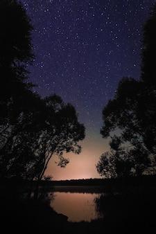 Bellissimo paesaggio notturno sul lago della foresta con stelle e nuvole riflesse nell'acqua in primavera