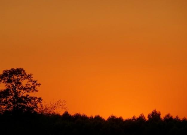 Bello colore arancione del cielo al tramonto sopra la sagoma della foresta di campagna in thailandia