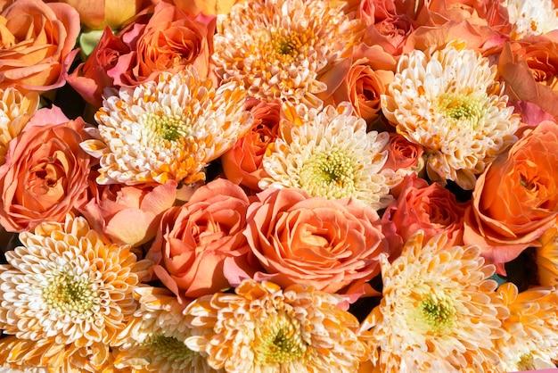 Bellissimo sfondo di fiori d'arancio. fiori di aster, vista dall'alto