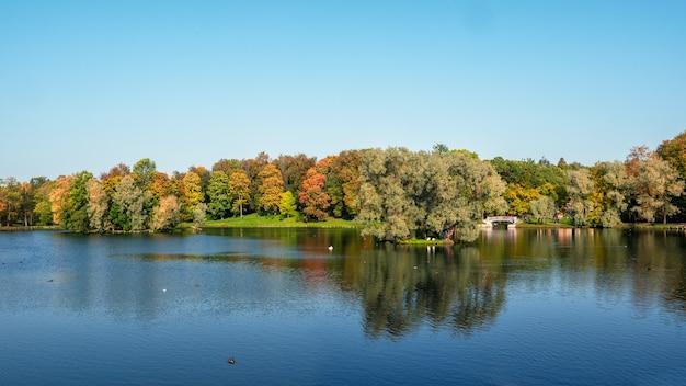 Bellissimo paesaggio autunnale panoramico con alberi luminosi in riva al lago