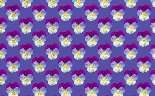 Bellissimi fiori di viola del pensiero. modello senza cuciture di fioritura delle viole del pensiero. sfondo naturale floreale.