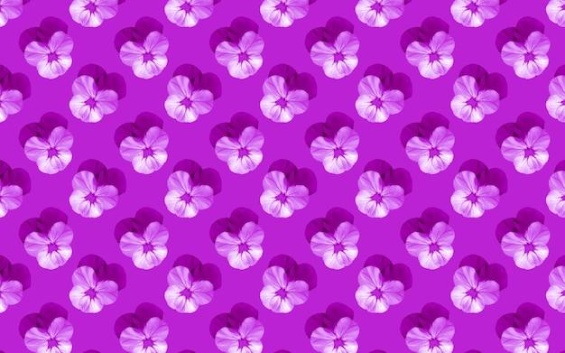 Bellissimi fiori di viola del pensiero. modello senza cuciture di viole del pensiero in fiore. sfondo naturale floreale.