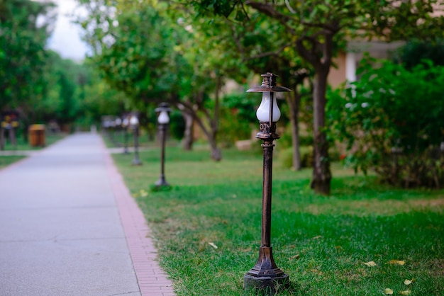 Bellissimo sentiero nel parco