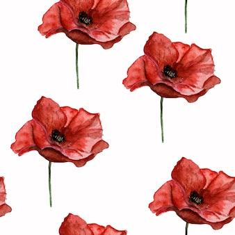 Bella immagine di fiori di papavero. buon giorno del ricordo. primo piano, vista dall'alto. concetto di festa nazionale. congratulazioni a famiglia, parenti, amici e colleghi