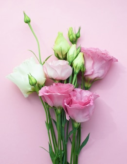 Bellissimi fiori di eustoma rosa (lisianthus) in piena fioritura con foglie di boccioli. bouquet di fiori su sfondo rosa. copia spazio