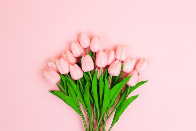 Belle tulipani rosa su sfondo rosa chiaro