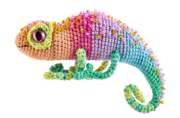 Bellissimo camaleonte arcobaleno