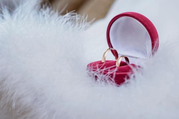 Una bella scatola rossa con fedi nuziali d'oro su piume bianche