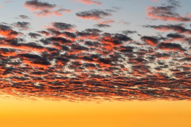 Belle nuvole rosse illuminate dai raggi del sole al tramonto fluttuano nel cielo giallo-blu.