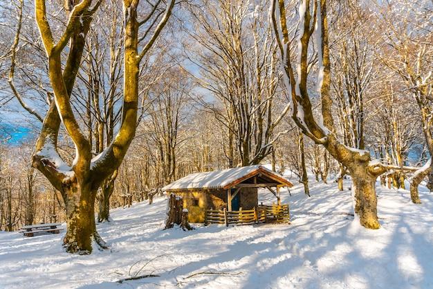 Bellissimo rifugio nel parco naturale di oianleku nella città di oiartzun vicino a penas de aya, gipuzkoa. paese basco