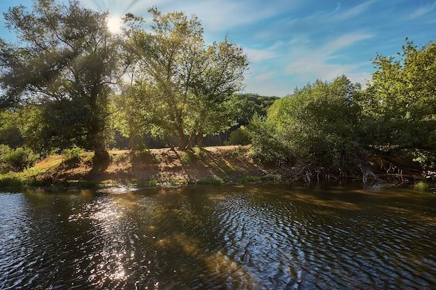 Bellissimo fiume con molta vegetazione e alberi e un bel riflesso nell'acqua