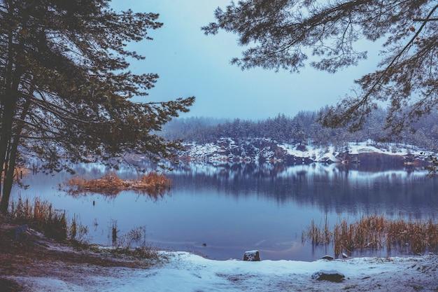 Bellissimo lago roccioso con alberi di pino. lago in inverno con nevicate