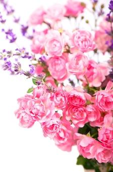 Bellissimo mazzo di rose fiori isolati su sfondo bianco
