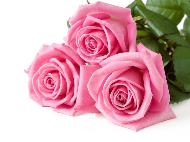Bouquet di bellissime rose su sfondo bianco