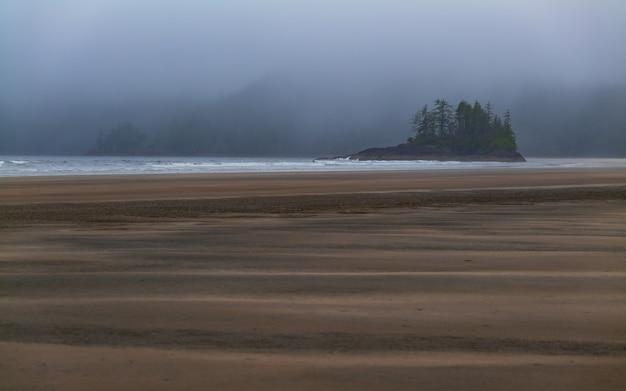 Bella spiaggia della baia di san josef con isola solitaria di alberi sull'isola di vancouver, nella columbia britannica, in canada, in una giornata umida e nebbiosa.