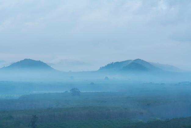 Uno splendido scenario dalla cima della collina che copre con nebbia nelle prime ore del mattino a surat thani, thailandia