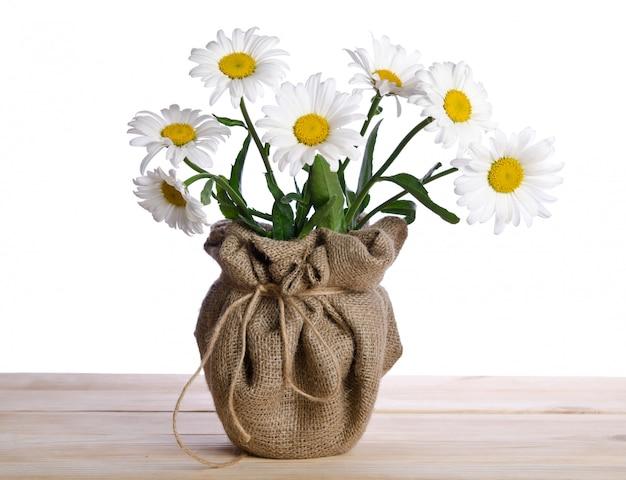 Bei sette fiori della camomilla in vaso da fiori sulla tavola di legno