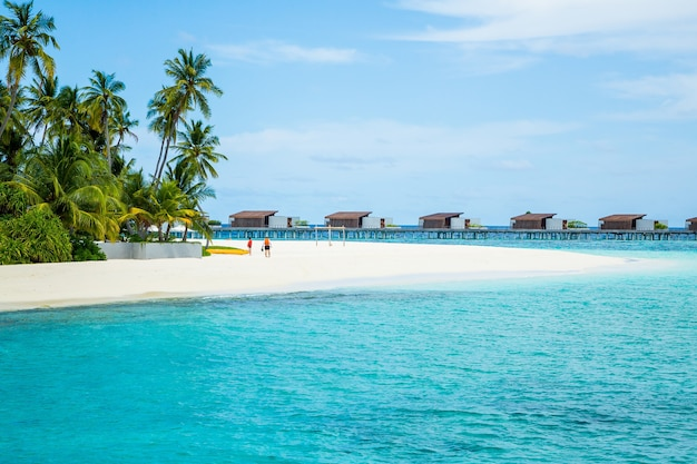 Bellissimo scatto di spiaggia vicino all'oceano blu