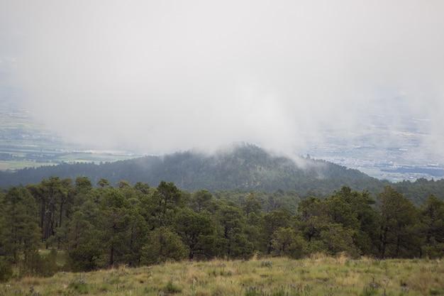 Bellissimo scatto di montagne boscose sotto un tempo nebbioso