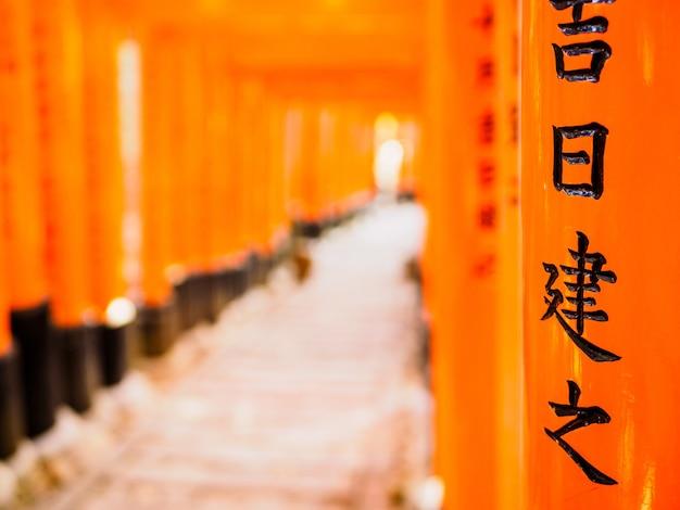 Bellissimo scatto di fushimi inari trail a kyoto, in giappone