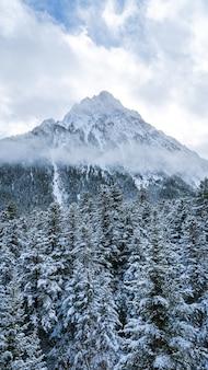 Bello scatto di una montagna e di una foresta innevate