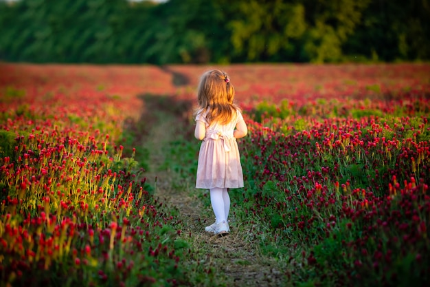 Bella ragazza sorridente del bambino in vestito rosa sul campo del trifoglio nel tempo di tramonto