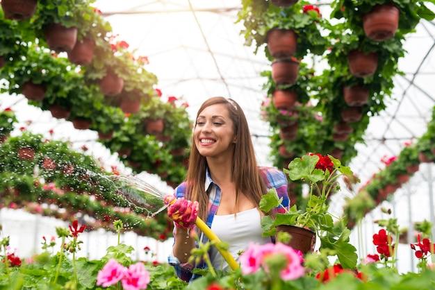 Fiorista di bella donna sorridente che gode del suo lavoro e innaffia le piante con amore nella serra del fiore.