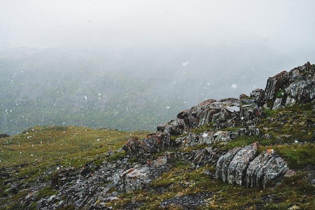 Bella nevicata in montagna atmosferica paesaggio alpino verde con grandi fiocchi di neve