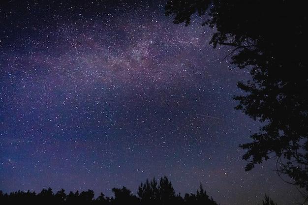 Bel cielo stellato