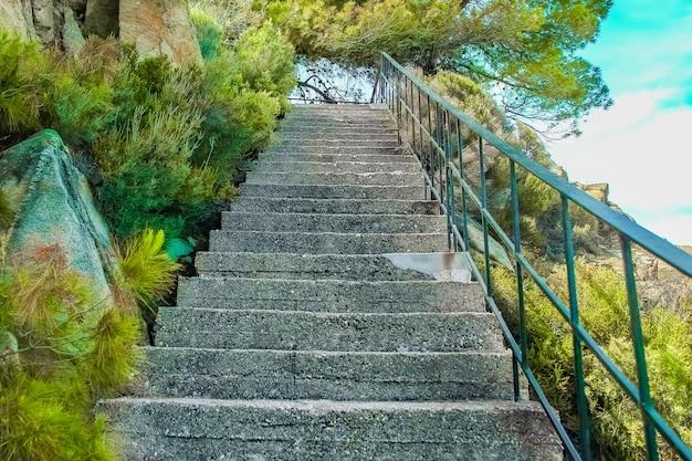 Bellissimi passi in riva al mare sulla natura sullo sfondo del parco