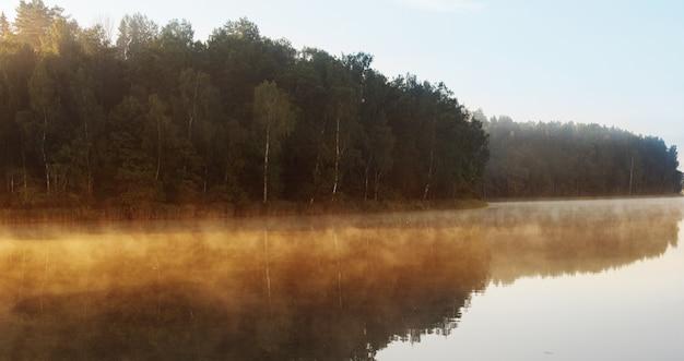 Bellissimo lago estivo al mattino