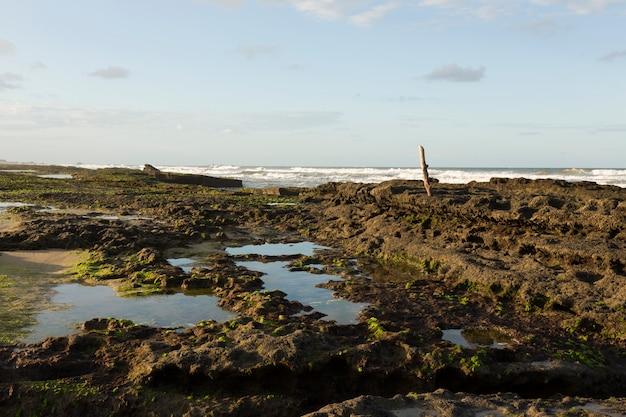 Bel tramonto sulla spiaggia di ilheus, bahia, brasile.