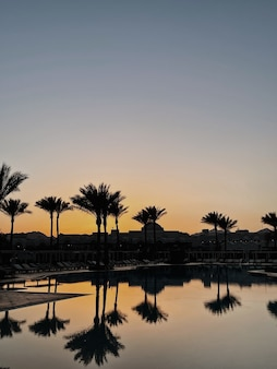 Splendida vista al tramonto o all'alba con cielo azzurro, palme tropicali, piscina con riflessi d'ombra