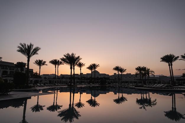 Splendida vista al tramonto o all'alba con cielo azzurro, palme tropicali, piscina