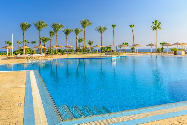 Bella piscina e palme in egitto
