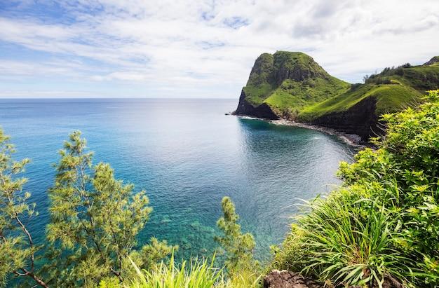 Bella spiaggia tropicale sull'isola di maui, hawaii