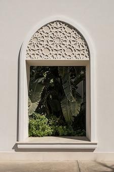 Bellissimo albero di palma tropicale nella finestra dell'edificio beige con ombre di luce solare.