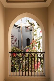 Bellissimo albero di piante tropicali con fiori rossi nella finestra dell'edificio beige con ombre di luce solare.