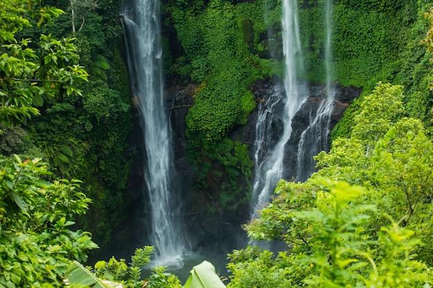 Bella cascata tropicale con acqua limpida nella giungla verde
