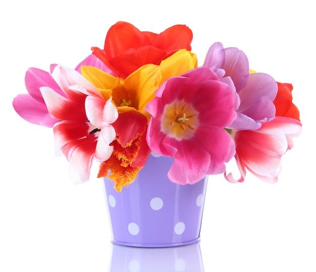 Bellissimi tulipani in bouquet isolati su bianco
