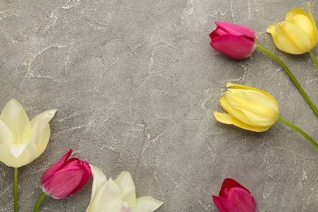 Bei tulipani sulla superficie grigia con lo spazio della copia