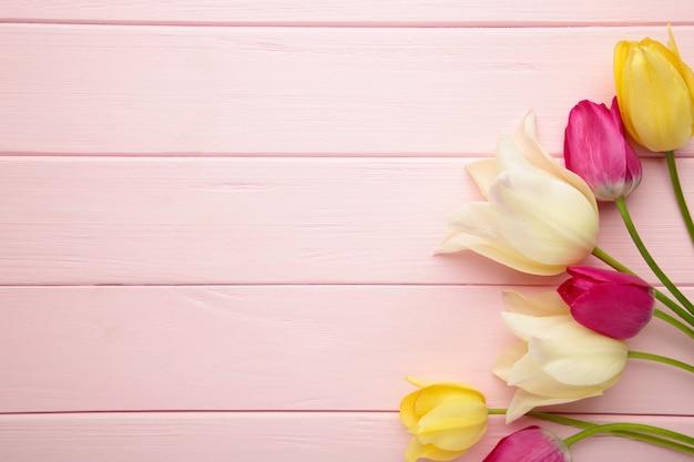 Bei tulipani sulla superficie rosa con lo spazio della copia