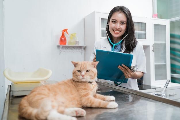 Bellissimo veterinario esaminando un gatto sul tavolo operatorio presso la clinica veterinaria