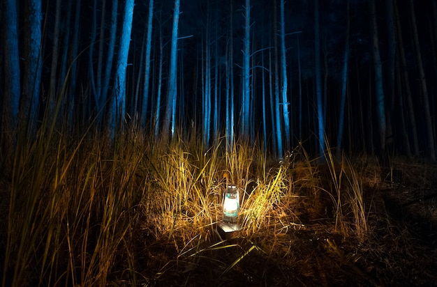 Bella vista della foresta oscura di notte illuminata da una vecchia lampada a gas