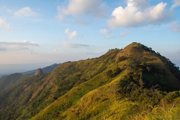 Splendida vista e foresta sulla cima di una montagna