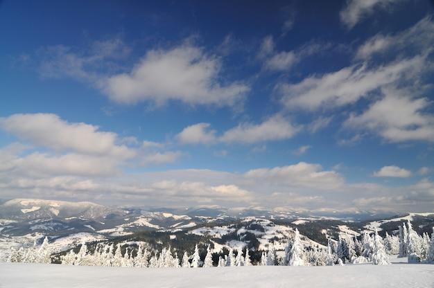 Bella vista dalla cima della montagna. bosco innevato, cielo blu su sfondo