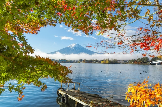 Bella vista del monte fuji san con foglie di acero rosse colorate e nebbia mattutina invernale